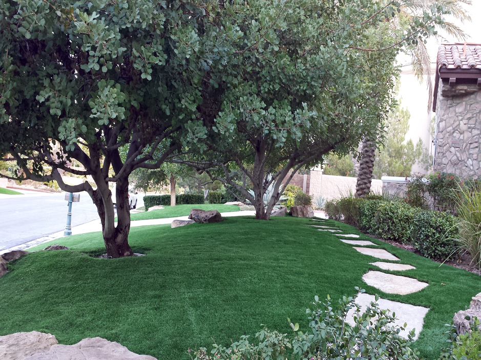 Best Artificial Grass Fortuna Foothills Arizona Rooftop Front Yard Design