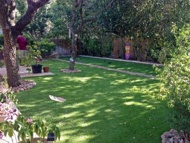 Artificial Grass Photos: Artificial Grass Carpet Hotevilla-Bacavi, Arizona Roof Top, Backyard Design