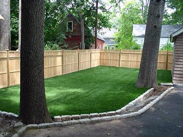 Artificial Grass Photos: Artificial Grass Carpet Scottsdale, Arizona Lawns, Backyards