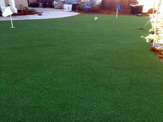 Artificial Grass Photos: Artificial Grass Carpet West Winslow, Arizona Design Ideas, Backyards