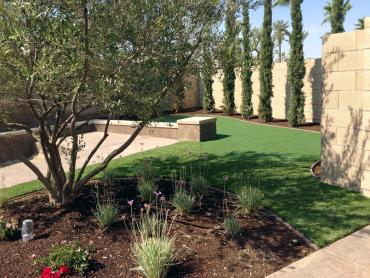 Artificial Grass Carpet Wilhoit, Arizona Garden Ideas, Backyard Landscaping Ideas artificial grass