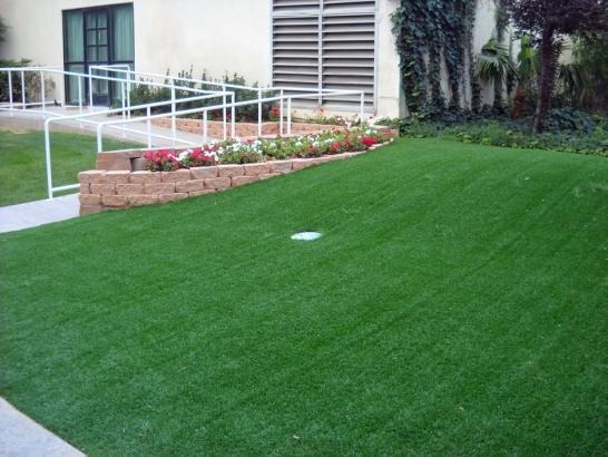 Artificial Grass Photos: Artificial Grass Installation Desert Hills, Arizona Design Ideas, Front Yard Landscaping Ideas