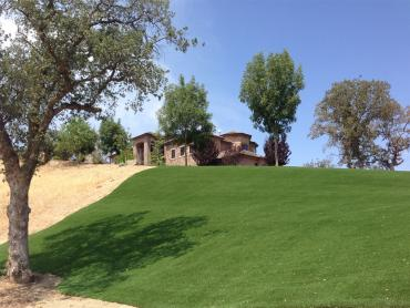 Artificial Grass Photos: Artificial Grass Village of Oak Creek (Big Park), Arizona Rooftop, Front Yard Landscaping Ideas