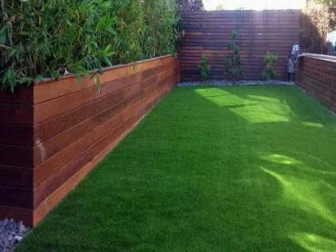 Artificial Grass Photos: Artificial Lawn Beyerville, Arizona Landscaping Business, Backyard Makeover