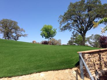 Artificial Grass Photos: Artificial Lawn Heber-Overgaard, Arizona Backyard Playground, Front Yard Landscape Ideas