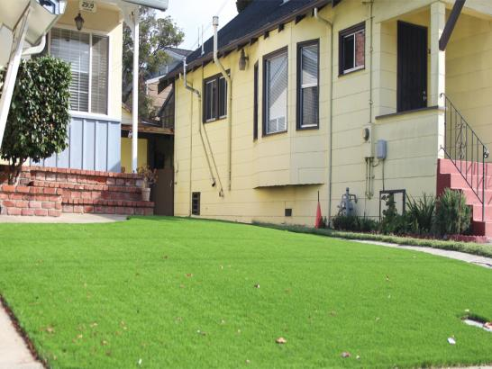 Artificial Grass Photos: Artificial Lawn Mesquite Creek, Arizona Home And Garden, Front Yard Landscaping Ideas