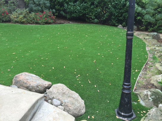 Artificial Grass Photos: Artificial Turf Casas Adobes, Arizona Landscape Photos, Backyard Design
