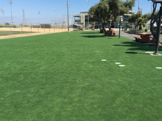 Artificial Grass Photos: Artificial Turf Cost Canyon Day, Arizona Gardeners, Recreational Areas