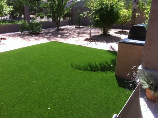 Artificial Grass Photos: Artificial Turf Installation Wilhoit, Arizona Design Ideas, Dogs