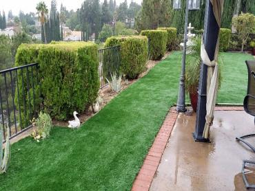 Artificial Grass Photos: Artificial Turf Installation Wintersburg, Arizona Roof Top, Backyard Design
