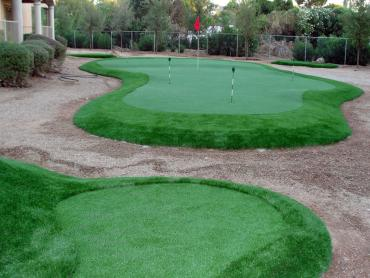 Artificial Turf Queen Valley, Arizona Outdoor Putting Green, Backyard Garden Ideas artificial grass