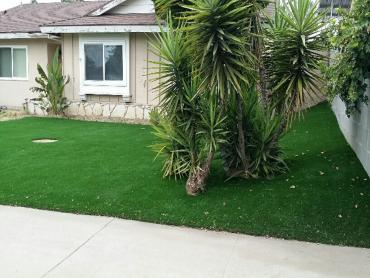 Artificial Grass Photos: Best Artificial Grass Dudleyville, Arizona Rooftop, Small Front Yard Landscaping
