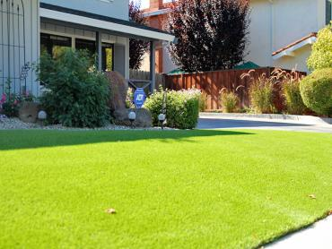 Artificial Grass Photos: Best Artificial Grass Washington Park, Arizona Lawn And Garden, Small Front Yard Landscaping