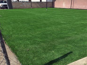 Artificial Grass Photos: Fake Grass Carpet Grand Canyon Village, Arizona Soccer Fields