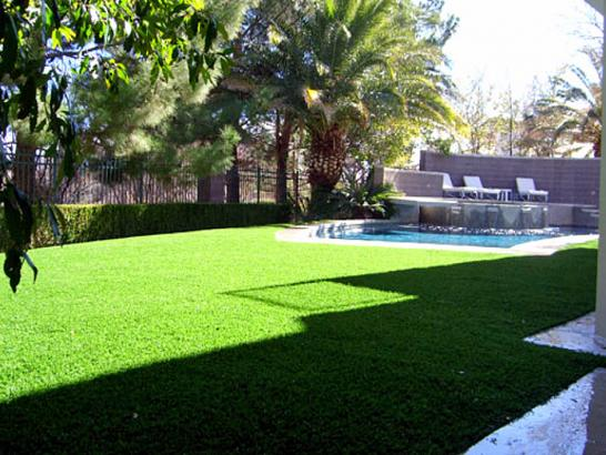 Artificial Grass Photos: Fake Grass Carpet Morenci, Arizona Backyard Playground, Backyard Design