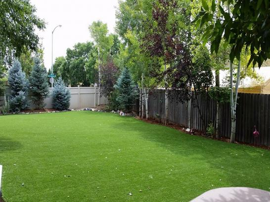 Artificial Grass Photos: Fake Grass Cave Creek, Arizona Dogs, Beautiful Backyards