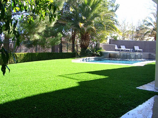 Artificial Grass Photos: Fake Grass Summerhaven, Arizona Design Ideas, Backyard Landscaping Ideas