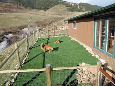 Artificial Grass Photos: Fake Lawn Hayden, Arizona Drainage, Backyard Garden Ideas