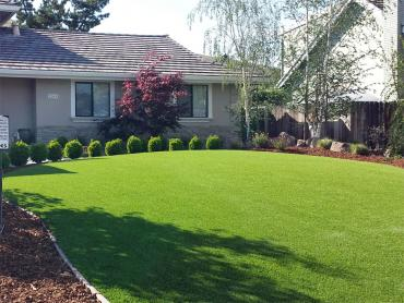 Artificial Grass Photos: Fake Turf Cowlic, Arizona Backyard Playground, Front Yard Design