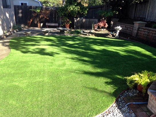 Artificial Grass Photos: Fake Turf Spring Valley, Arizona Dog Running, Backyard Ideas