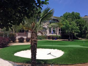 Artificial Grass Photos: Fake Turf Top-of-the-World, Arizona Putting Green Grass, Front Yard Landscaping Ideas