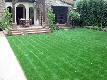 Artificial Grass Photos: Faux Grass Arivaca, Arizona Lawns, Landscaping Ideas For Front Yard