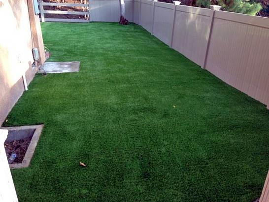 Artificial Grass Photos: Faux Grass First Mesa, Arizona Watch Dogs, Backyard