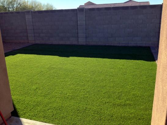 Artificial Grass Photos: Faux Grass Paradise Valley, Arizona Gardeners, Backyard Designs