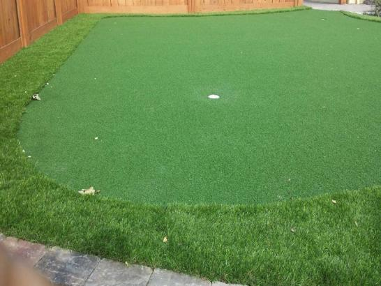 Artificial Grass Photos: Faux Grass White Cone, Arizona Outdoor Putting Green