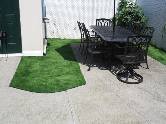 Artificial Grass Photos: Grass Carpet Carrizo, Arizona Design Ideas, Backyard Ideas