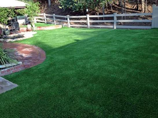 Artificial Grass Photos: Grass Carpet Naco, Arizona Design Ideas, Backyard Landscaping