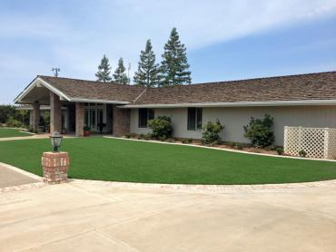 Artificial Grass Photos: Grass Installation Dateland, Arizona Landscape Photos, Front Yard Landscape Ideas