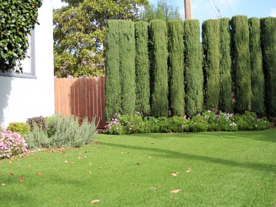 Artificial Grass Photos: Grass Installation Scottsdale, Arizona Landscaping, Small Front Yard Landscaping