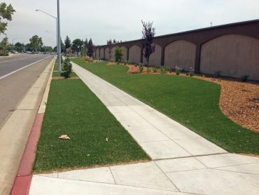 Artificial Grass Photos: Grass Installation Sevenmile, Arizona Backyard Playground, Commercial Landscape