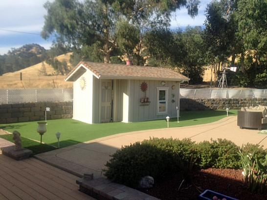 Artificial Grass Photos: Grass Installation Wenden, Arizona Garden Ideas, Commercial Landscape