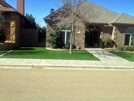 Artificial Grass Photos: Grass Turf Arivaca, Arizona Lawns, Front Yard Landscape Ideas