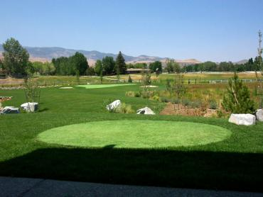 Artificial Grass Photos: Grass Turf Queen Valley, Arizona Office Putting Green, Backyard Makeover