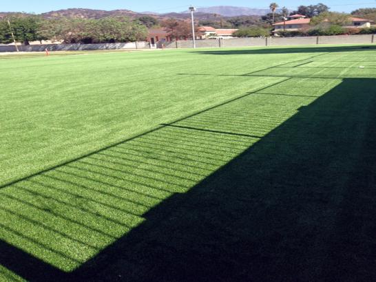 Artificial Grass Photos: Grass Turf Sun Valley, Arizona Rooftop