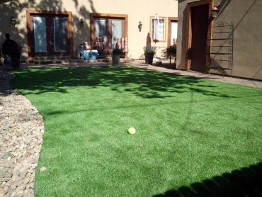 Green Lawn Alpine, Arizona City Landscape, Backyard Designs artificial grass