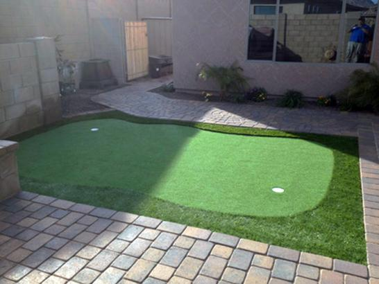 Artificial Grass Photos: Green Lawn Toyei, Arizona Best Indoor Putting Green, Backyard Design