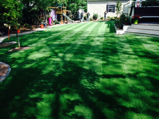 Artificial Grass Photos: How To Install Artificial Grass West Sedona, Arizona Landscape Ideas, Backyards