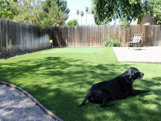 Artificial Grass Photos: Installing Artificial Grass Congress, Arizona Pictures Of Dogs, Backyard Design