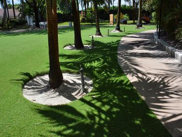 Installing Artificial Grass Drexel Heights, Arizona Dog Parks, Commercial Landscape artificial grass