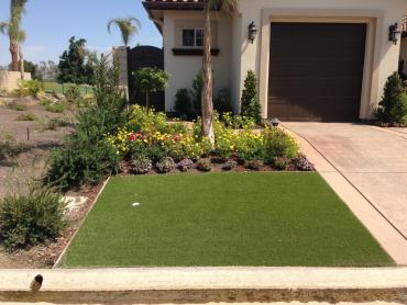 Artificial Grass Photos: Installing Artificial Grass McConnico, Arizona Backyard Playground, Front Yard Ideas