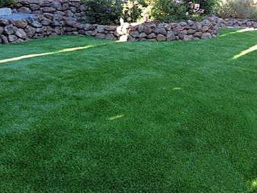 Artificial Grass Photos: Installing Artificial Grass Sanders, Arizona Lawns, Backyard Landscape Ideas