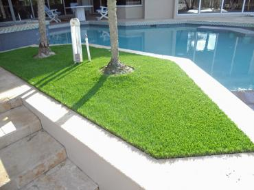 Artificial Grass Photos: Lawn Services Buckeye, Arizona Roof Top, Swimming Pool Designs