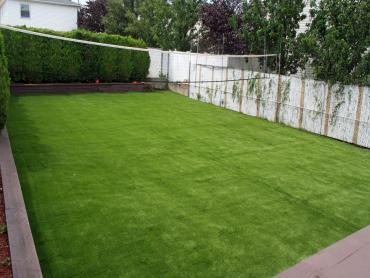 Artificial Grass Photos: Lawn Services San Jose, Arizona Backyard Playground, Backyard Ideas