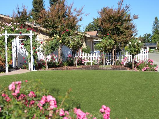 Artificial Grass Photos: Outdoor Carpet East Fork, Arizona Backyard Playground, Front Yard
