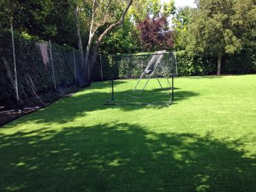Artificial Grass Photos: Outdoor Carpet Truxton, Arizona Red Turf, Backyards