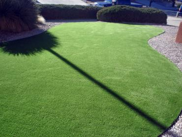 Artificial Grass Photos: Plastic Grass Bouse, Arizona Landscaping Business, Front Yard Ideas